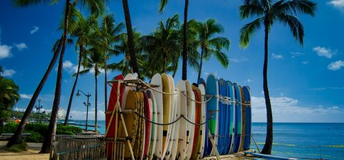 Surfboards lined up at one of the best Oahu Surf Spots
